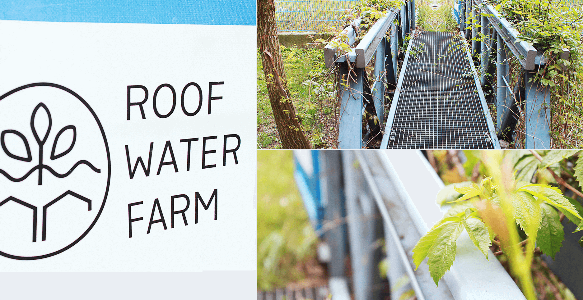 170608-Roof-Water-Farm3