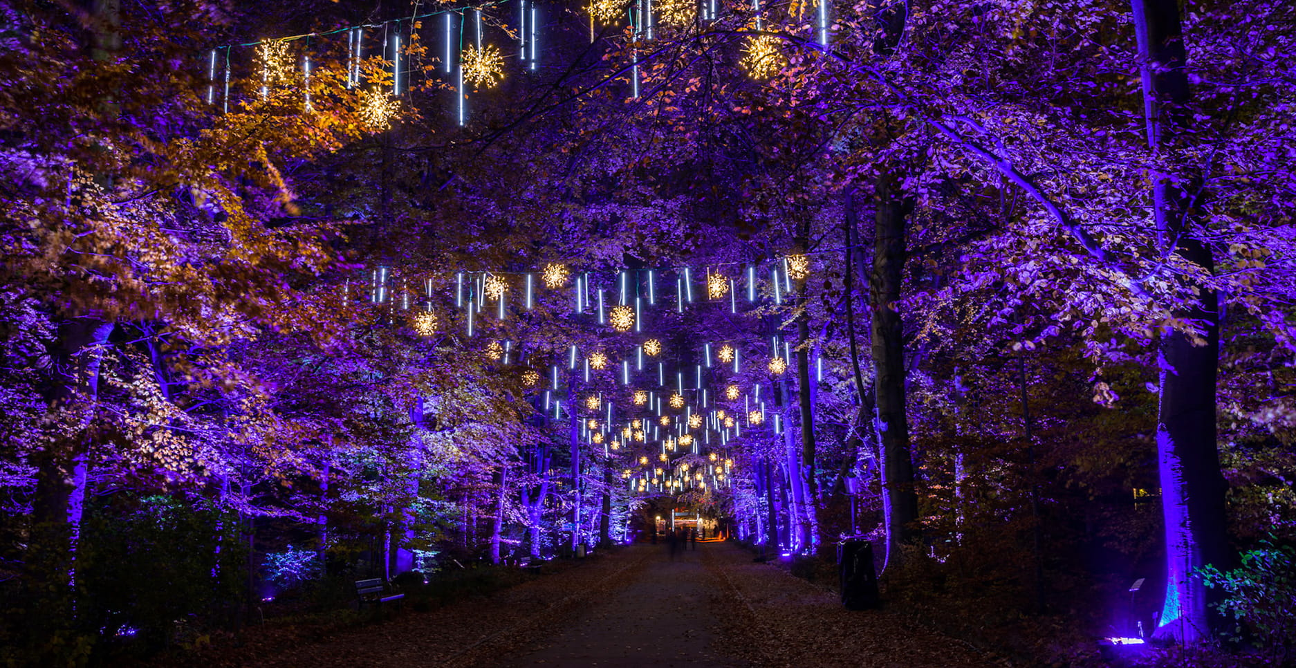 GASAG-Blog-Top10-Winter-Berlin-Christmas-Garden
